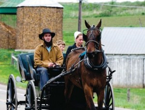 ohio-amish-stock-photo
