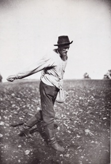Farmer Sowing by Hand